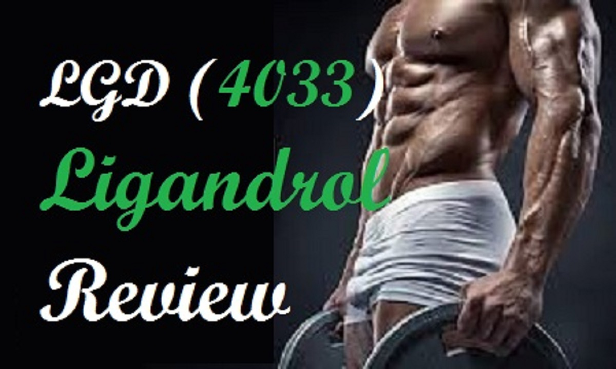 LGD 4033 review