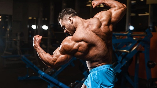 sarms-cycle-guide